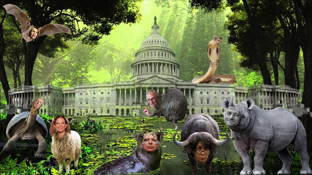 Swamp Creature of the Week