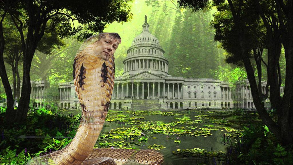 SwampComeyus weaseli